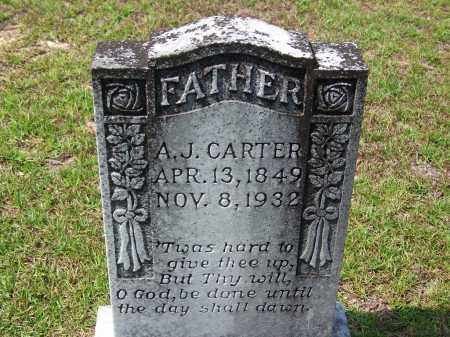 CARTER, A J - Cleveland County, Arkansas | A J CARTER - Arkansas Gravestone Photos