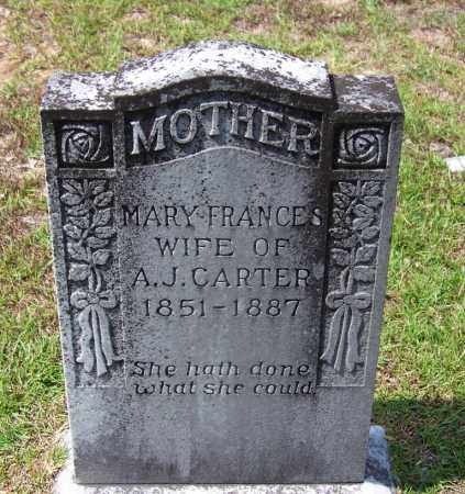 CARTER, MARY FRANCES - Cleveland County, Arkansas | MARY FRANCES CARTER - Arkansas Gravestone Photos