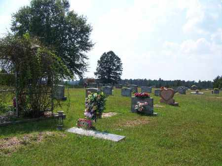 *GARNER, CEMETERY OVERVIEW - Cleveland County, Arkansas | CEMETERY OVERVIEW *GARNER - Arkansas Gravestone Photos