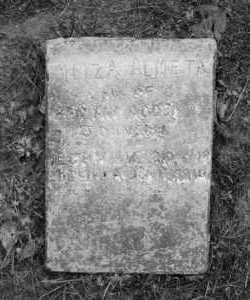 JOHNSON, MELZA ALMETA - Cleveland County, Arkansas | MELZA ALMETA JOHNSON - Arkansas Gravestone Photos
