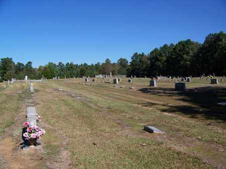 *OVERVIEW,  - Cleveland County, Arkansas |  *OVERVIEW - Arkansas Gravestone Photos