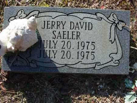 SAELER, JERRY DAVID - Cleveland County, Arkansas | JERRY DAVID SAELER - Arkansas Gravestone Photos