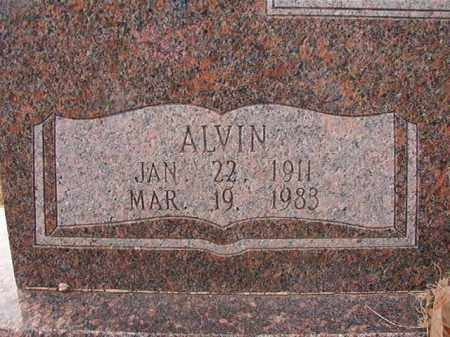 ALDRIDGE, ALVIN - Columbia County, Arkansas | ALVIN ALDRIDGE - Arkansas Gravestone Photos