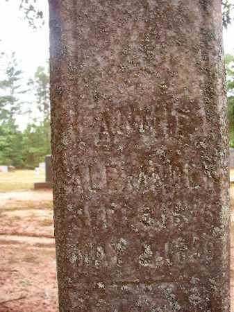 ALEXANDER, ANNIE - Columbia County, Arkansas | ANNIE ALEXANDER - Arkansas Gravestone Photos
