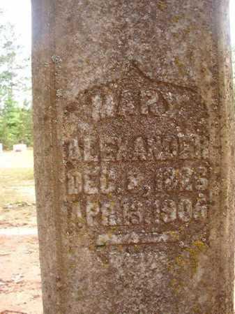 ALEXANDER, MARY - Columbia County, Arkansas   MARY ALEXANDER - Arkansas Gravestone Photos