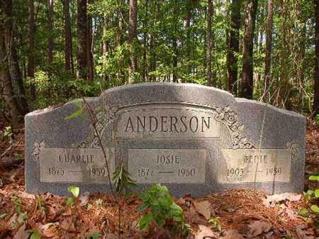 ANDERSON, BEDIE - Columbia County, Arkansas | BEDIE ANDERSON - Arkansas Gravestone Photos