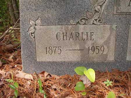 ANDERSON, CHARLIE - Columbia County, Arkansas | CHARLIE ANDERSON - Arkansas Gravestone Photos