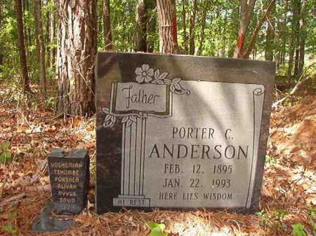 ANDERSON, PORTER C - Columbia County, Arkansas | PORTER C ANDERSON - Arkansas Gravestone Photos