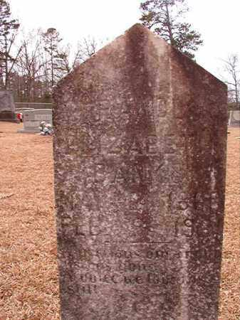 BANKS, FRANCES ELIZABETH - Columbia County, Arkansas | FRANCES ELIZABETH BANKS - Arkansas Gravestone Photos
