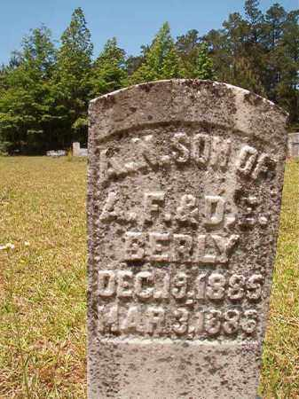 BERLY, A N - Columbia County, Arkansas | A N BERLY - Arkansas Gravestone Photos