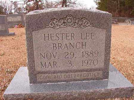 BRANCH, HESTER LEE - Columbia County, Arkansas | HESTER LEE BRANCH - Arkansas Gravestone Photos