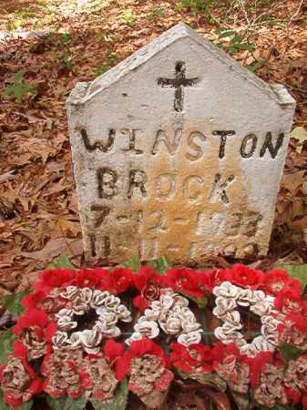 BROCK, WINSTON - Columbia County, Arkansas | WINSTON BROCK - Arkansas Gravestone Photos