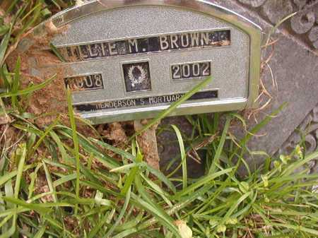 BROWN, WILLIE M - Columbia County, Arkansas | WILLIE M BROWN - Arkansas Gravestone Photos