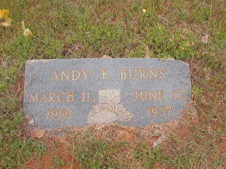 BURNS, ANDY F - Columbia County, Arkansas | ANDY F BURNS - Arkansas Gravestone Photos