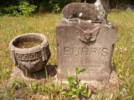 BURRIS, ANNISON - Columbia County, Arkansas | ANNISON BURRIS - Arkansas Gravestone Photos