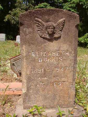 BURRIS, ELIZABETH - Columbia County, Arkansas | ELIZABETH BURRIS - Arkansas Gravestone Photos