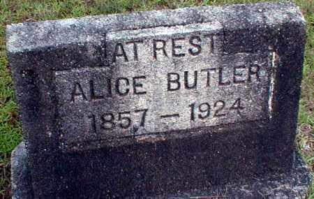 BUTLER, ALICE - Columbia County, Arkansas   ALICE BUTLER - Arkansas Gravestone Photos
