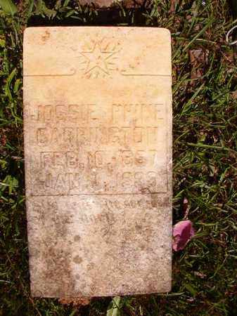 CARRINGTON, JOSSIE PHINE - Columbia County, Arkansas | JOSSIE PHINE CARRINGTON - Arkansas Gravestone Photos