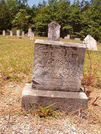 CARSON, LESTER - Columbia County, Arkansas | LESTER CARSON - Arkansas Gravestone Photos