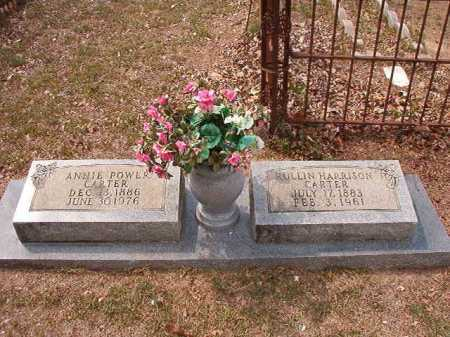 POWER CARTER, ANNIE - Columbia County, Arkansas | ANNIE POWER CARTER - Arkansas Gravestone Photos