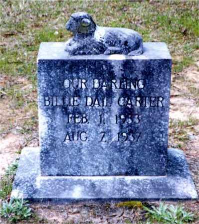 CARTER, BILLIE DAIL - Columbia County, Arkansas | BILLIE DAIL CARTER - Arkansas Gravestone Photos