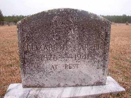 CARTER, ELIZABETH - Columbia County, Arkansas | ELIZABETH CARTER - Arkansas Gravestone Photos