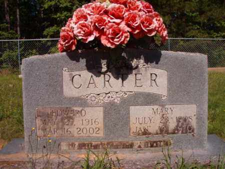 CARTER, MARY - Columbia County, Arkansas | MARY CARTER - Arkansas Gravestone Photos