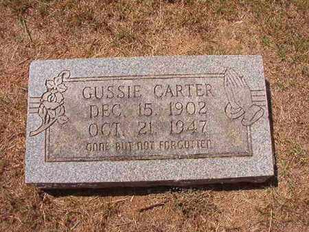 CARTER, GUSSIE - Columbia County, Arkansas | GUSSIE CARTER - Arkansas Gravestone Photos
