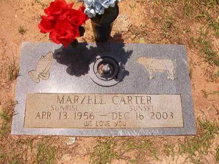 CARTER, MARZELL - Columbia County, Arkansas | MARZELL CARTER - Arkansas Gravestone Photos