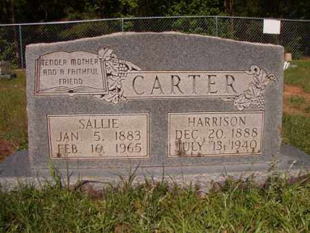 CARTER, SALLIE - Columbia County, Arkansas | SALLIE CARTER - Arkansas Gravestone Photos