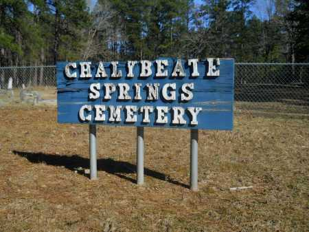 *CHALYBEATE SPRINGS CEMETERY S,  - Columbia County, Arkansas |  *CHALYBEATE SPRINGS CEMETERY S - Arkansas Gravestone Photos