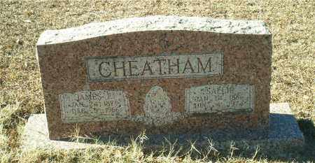 CHEATHAM, SALLIE SARA - Columbia County, Arkansas | SALLIE SARA CHEATHAM - Arkansas Gravestone Photos