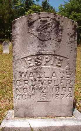 CRUMPLER, ESPIE WALLACE - Columbia County, Arkansas | ESPIE WALLACE CRUMPLER - Arkansas Gravestone Photos