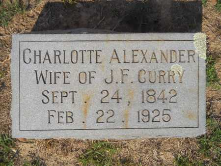 ALEXANDER CURRY, CHARLOTTE - Columbia County, Arkansas | CHARLOTTE ALEXANDER CURRY - Arkansas Gravestone Photos