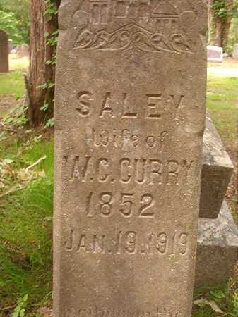 CURRY, SALEY - Columbia County, Arkansas | SALEY CURRY - Arkansas Gravestone Photos
