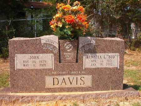 DAVIS, JOHN - Columbia County, Arkansas | JOHN DAVIS - Arkansas Gravestone Photos
