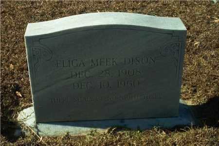 DISON, ELIGA MEEK - Columbia County, Arkansas | ELIGA MEEK DISON - Arkansas Gravestone Photos