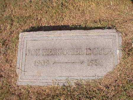 DOYLE, JOE HERSCHEL - Columbia County, Arkansas | JOE HERSCHEL DOYLE - Arkansas Gravestone Photos