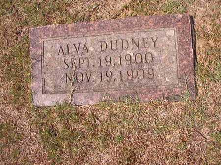 DUDNEY, ALVA - Columbia County, Arkansas | ALVA DUDNEY - Arkansas Gravestone Photos