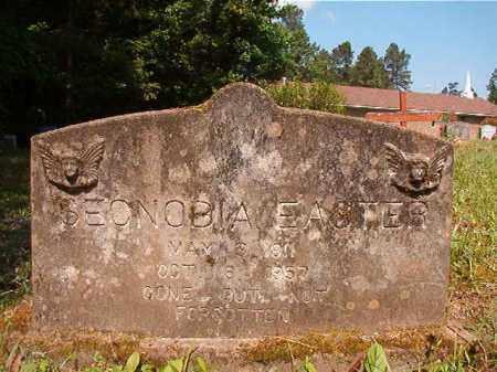EASTER, SECNOBIA - Columbia County, Arkansas | SECNOBIA EASTER - Arkansas Gravestone Photos