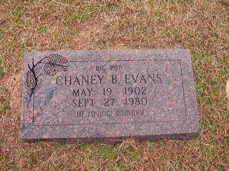 EVANS, CHANEY B - Columbia County, Arkansas | CHANEY B EVANS - Arkansas Gravestone Photos
