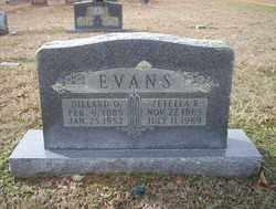 EVANS, DILLARD O - Columbia County, Arkansas | DILLARD O EVANS - Arkansas Gravestone Photos