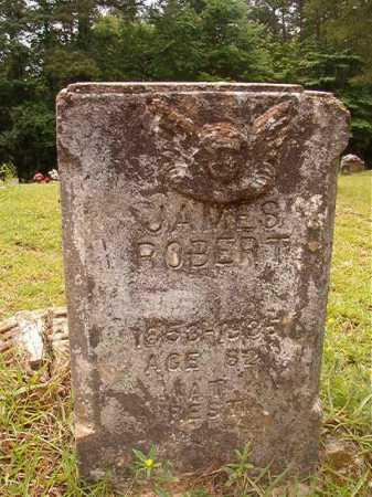 FERGUSON, JAMES ROBERT - Columbia County, Arkansas | JAMES ROBERT FERGUSON - Arkansas Gravestone Photos