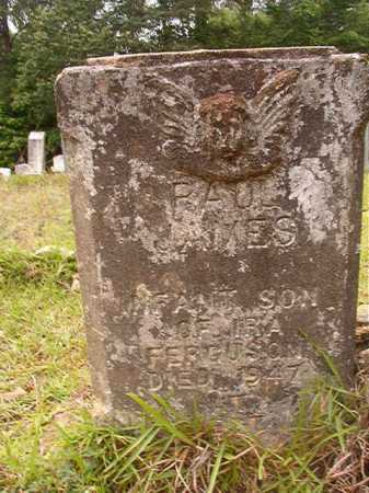 FERGUSON, PAUL JAMES - Columbia County, Arkansas | PAUL JAMES FERGUSON - Arkansas Gravestone Photos