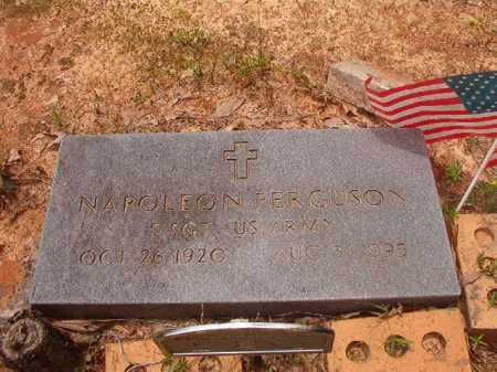 FERGUSON (VETERAN), NAPOLEON - Columbia County, Arkansas | NAPOLEON FERGUSON (VETERAN) - Arkansas Gravestone Photos