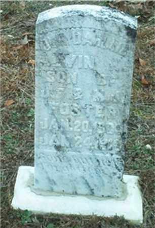 FOSTER, ALVIN HERBERT - Columbia County, Arkansas | ALVIN HERBERT FOSTER - Arkansas Gravestone Photos