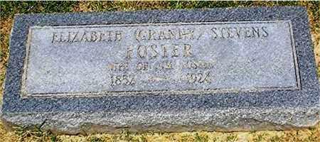 STEVENS FOSTER, ELIZABETH (GRANNY) - Columbia County, Arkansas | ELIZABETH (GRANNY) STEVENS FOSTER - Arkansas Gravestone Photos