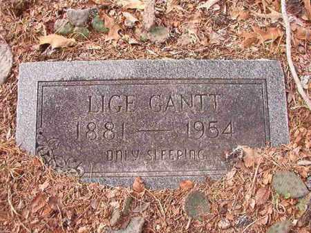 GANTT, LIGE - Columbia County, Arkansas | LIGE GANTT - Arkansas Gravestone Photos