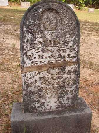GREEN, DAVID C - Columbia County, Arkansas | DAVID C GREEN - Arkansas Gravestone Photos