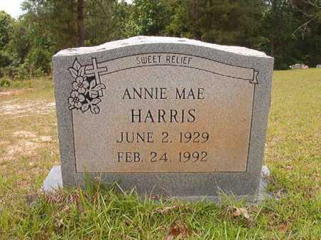 HARRIS, ANNIE MAE - Columbia County, Arkansas | ANNIE MAE HARRIS - Arkansas Gravestone Photos